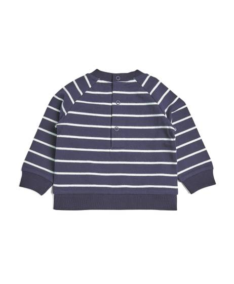 Wild Stripe Sweatshirt