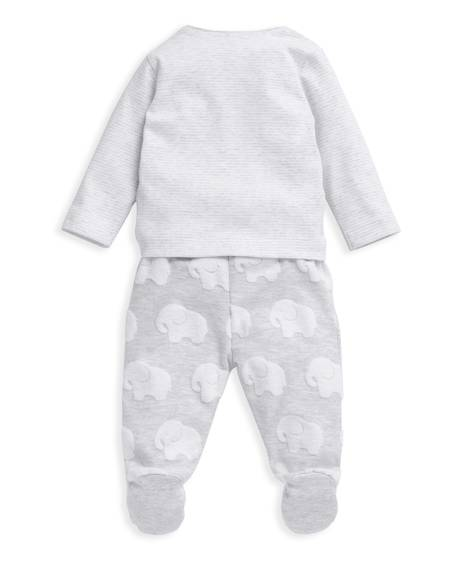 2 Piece Elephant Set